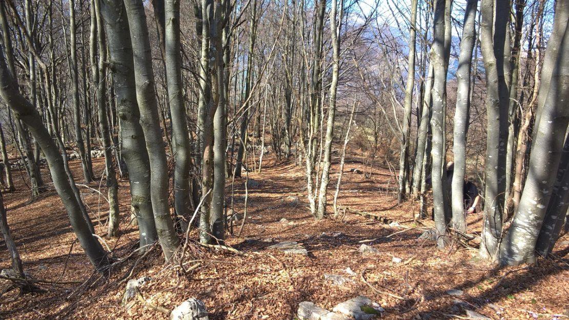 fupiano - terrain per sito 2
