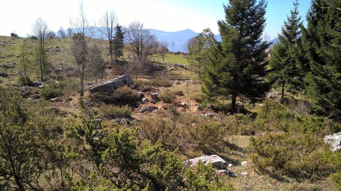 fupiano - terrain per sito 6