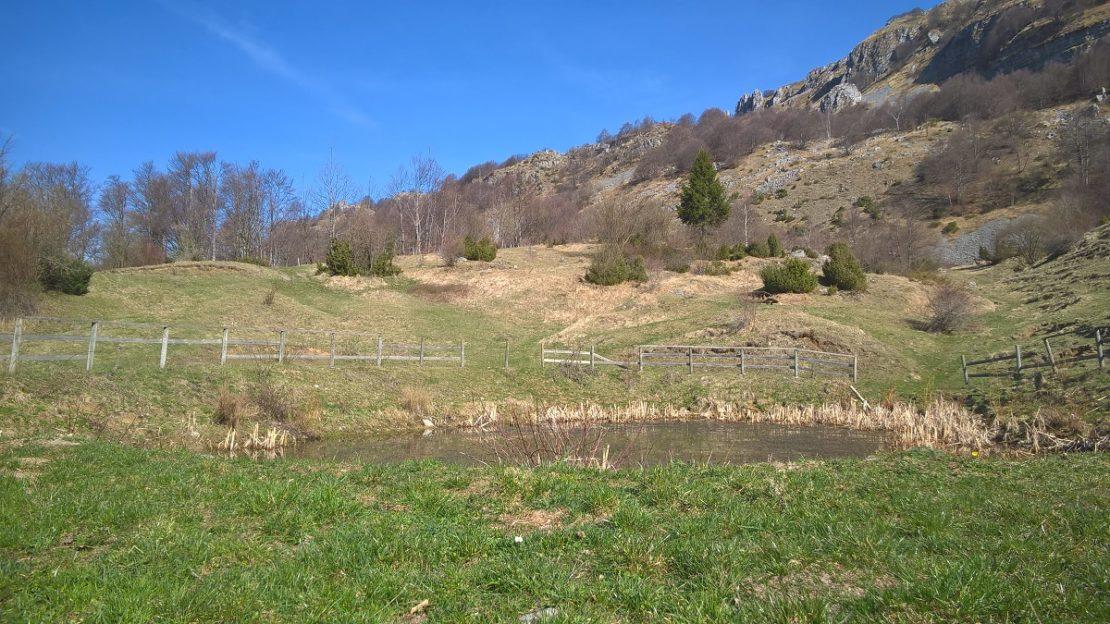 fupiano - terrain per sito 5
