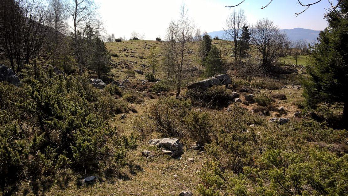 fupiano - terrain per sito 7